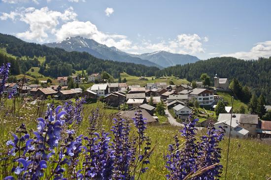 Bergbahnen Feldis-1