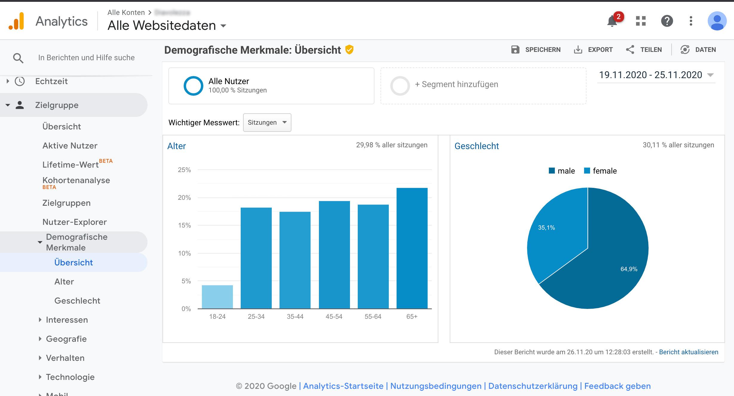 Screenshot vom Zielgruppenbericht in Google Analytics