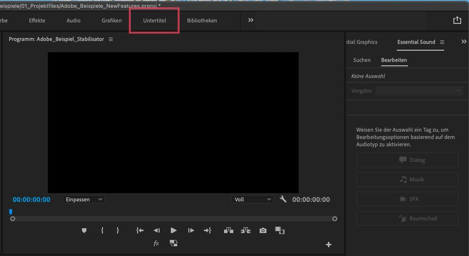 Screenshot Untertitel Menü in Premiere Pro